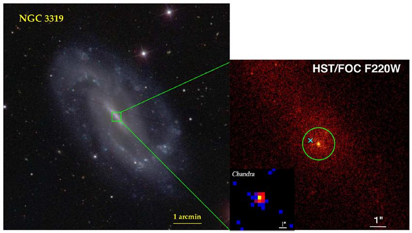 在近邻棒旋星系NGC 3319中心发现中等质量黑洞候选体