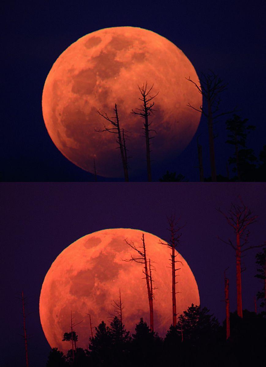 大雪山月出带食 王志信摄。